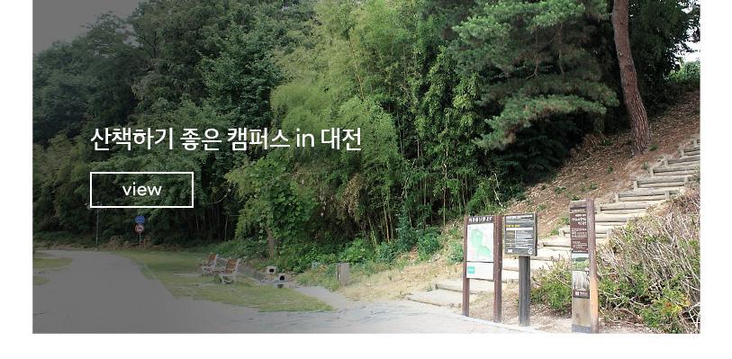 산책하기 좋은 캠퍼스 in 대전